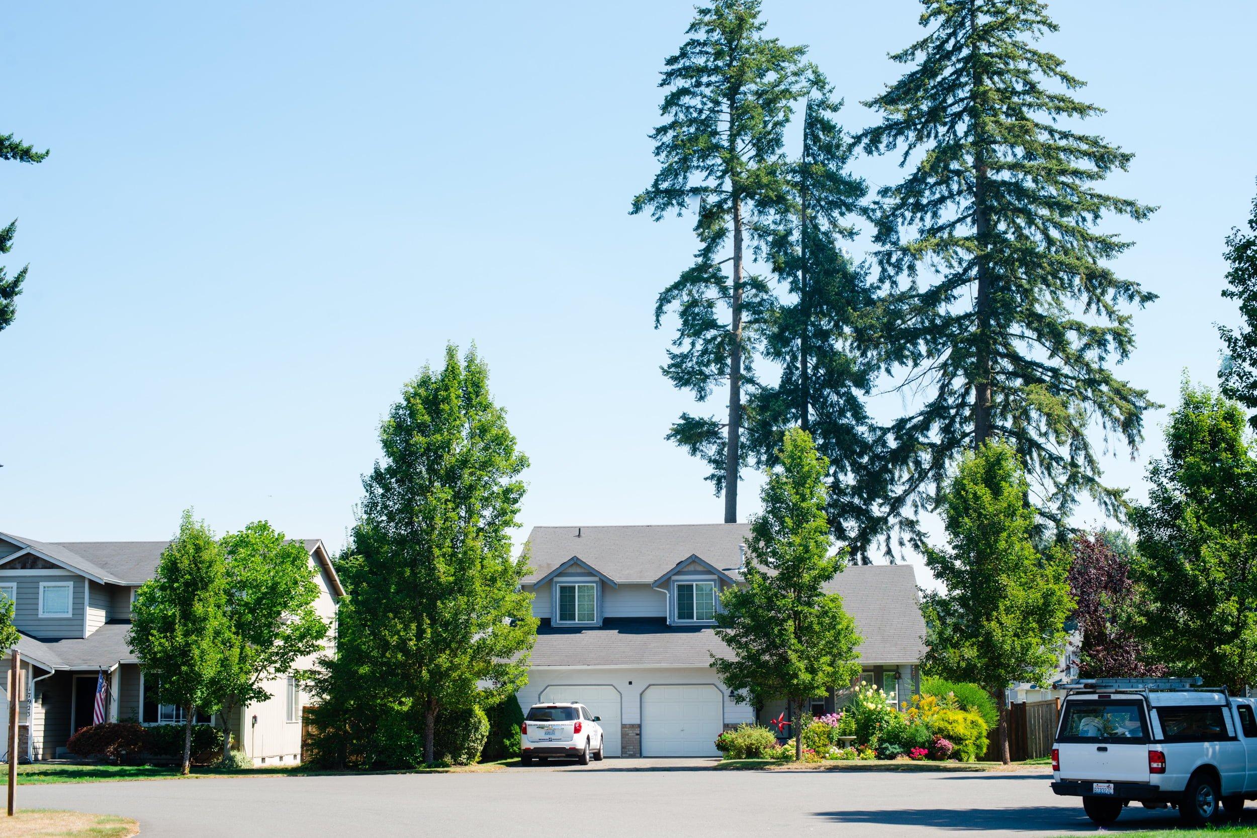 south hill neighborhood homes